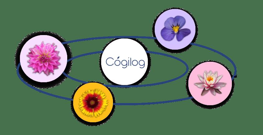 Cogilog liens entre logiciels